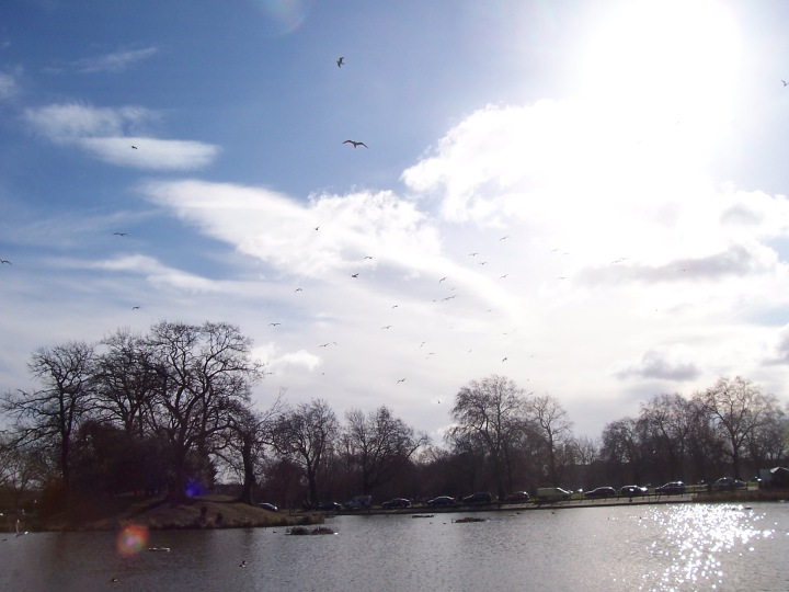 Clapham Common 004