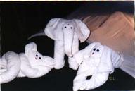 towel cuties