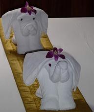 towsel elephants